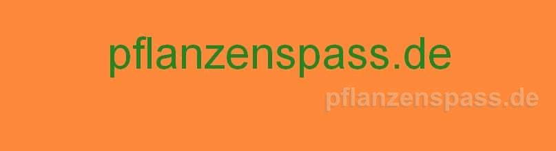 pflanzenspass.de orange gruen b807 h220