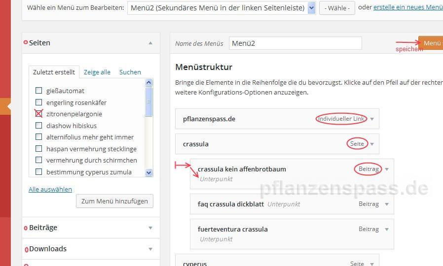 Anleitung Menü WordPress