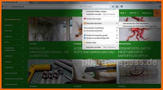 RSS-Feed mit Firefox nutzen Titel1