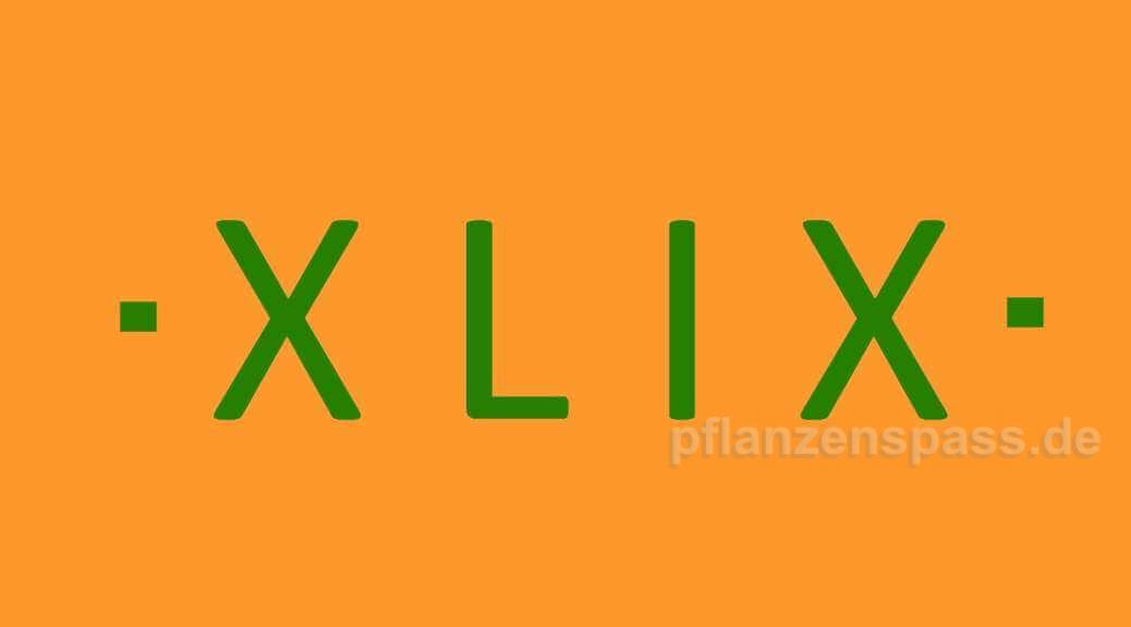 XLIX römische Zahl 49 als Spezialfall