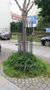fertig bepflanzte Rankgitter für Efeu Design