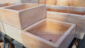 Terracotta Pflanzschale dickwandig und zu schwer Gewicht Bonsaischale