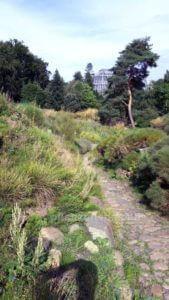Außenanlagen Botanischer Garten Berlin