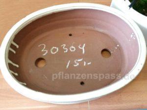 Bonsaischale ebay Keramik oval preiswert 30304 - 15 Euro