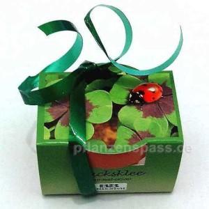 Geschenkset Glücksklee vierblättriger mit Topf Erde und drei Zwiebeln