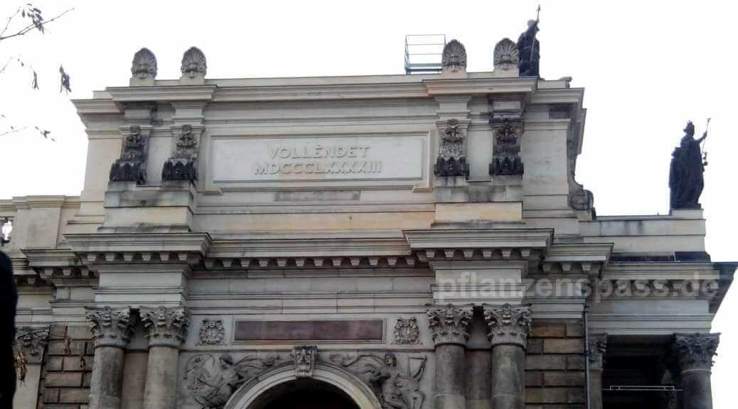 Eingang Ostseite der Kunstakademie Dresden und Römische Zahl