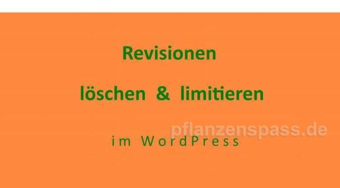 Revisionen löschen limitieren Wordpress Anleitung