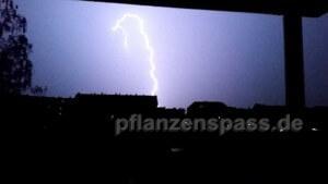 Gewitter Blitze fotografieren