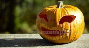 Halloween Kürbis basteln Anleitung